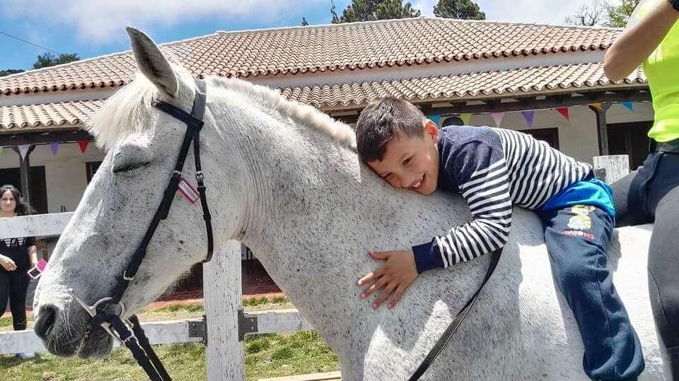 Actividad con caballos hípica adventours