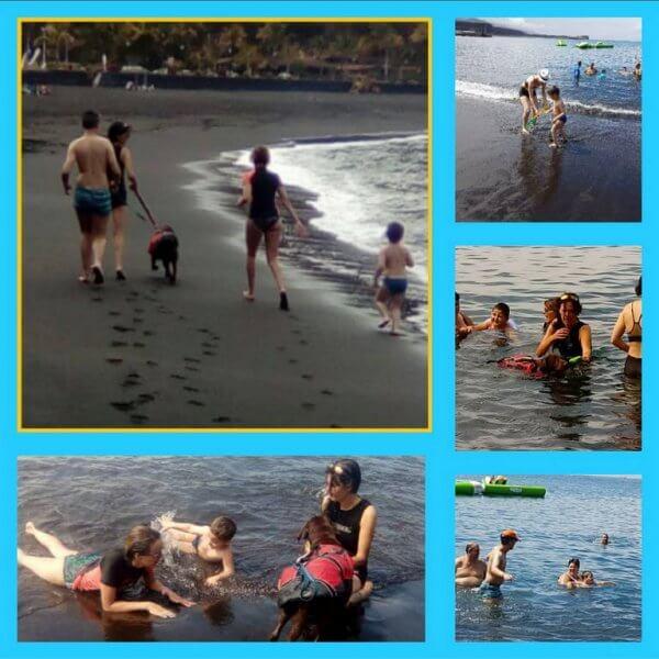 intervención para el autismo con perros en La Palma